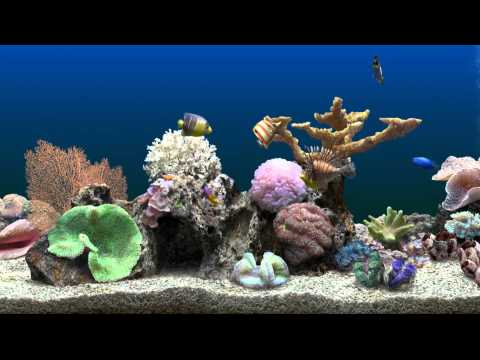 Marine Aquarium Virtual Fishtank