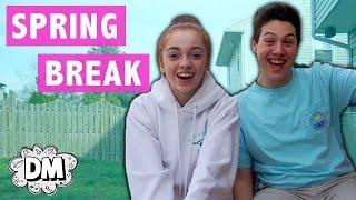 Spring Break Vlog + Mini Q & A!   Alyssa Vlogs