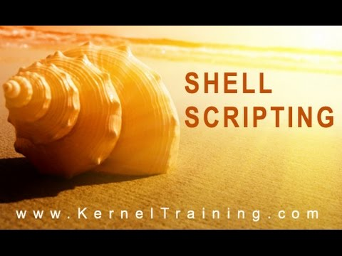 Shell Scripting – Fundamentals Part 01 |  Tutorial for Beginners