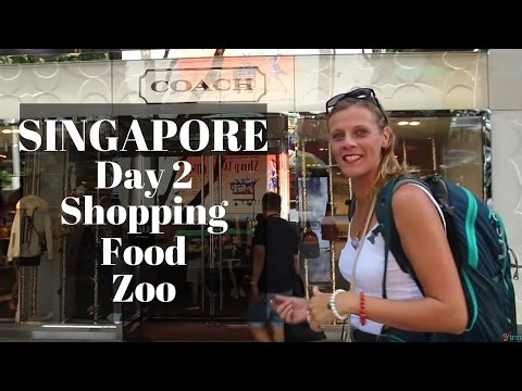 Family Travel To Singapore: Shopping Street, Zoo and Singapore Food