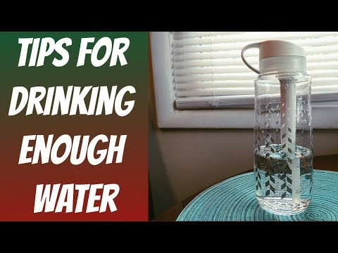 How To Drink A Gallon Of Water A Day   Brita Water Bottle Review Vlogmas Day 16