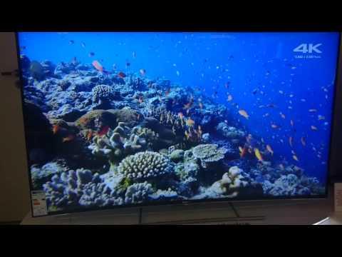 SONY BRAVIA Android TV ukryta przeglądarka