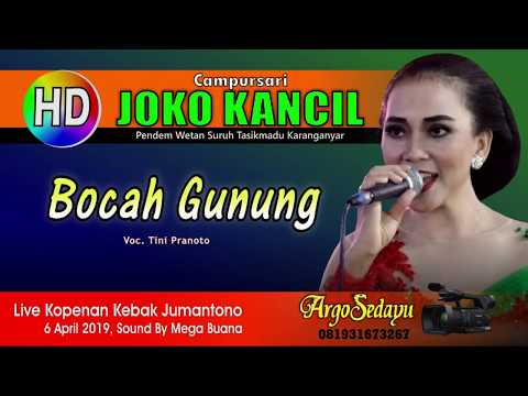 Lirik Lagu BOCAH GUNUNG Langgam Karawitan Campursari - AnekaNews.net