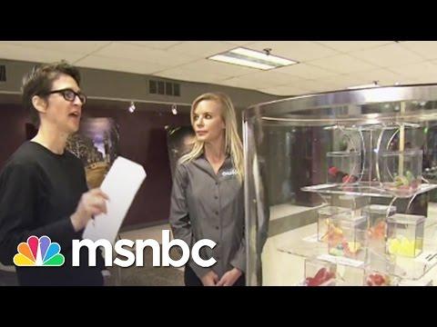 Rachel Maddow Shops For Pot | Rachel Maddow | MSNBC