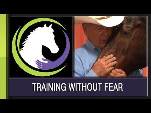 Training Without Fear: John Lyons, Jody Ambrose and John Madigan,  DVM