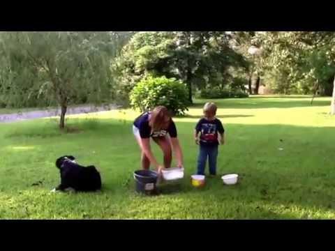 #icebucketchallenge #ALS #icebucket #previvor