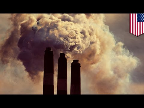 Carbon emissions: New carbon capture and storage technology can trap 90% of emissions - TomoNews