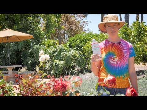 Cleaning Patio Furniture with Dr. Bronner's