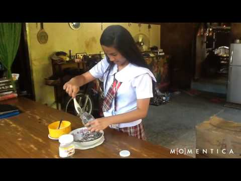 "How To Make ""Ginamos"" by Phoebe Bucol"
