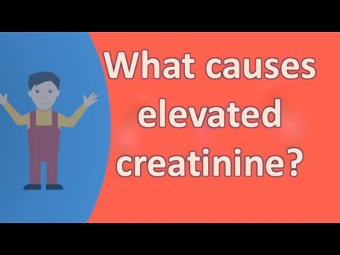 What causes elevated creatinine ?
