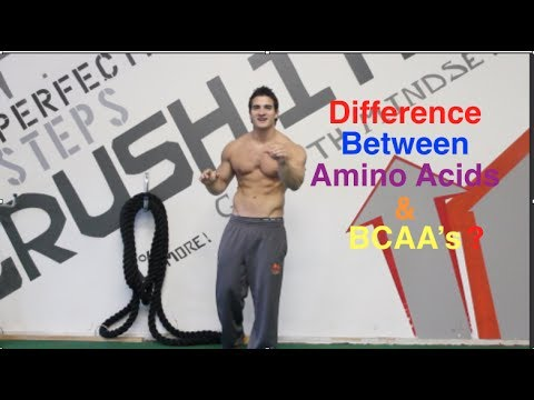 What is the Difference Between BCAA's & Amino Acids? And Are They Worth Taking?