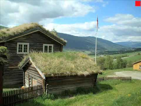 Green Roofs: Saving the Planet One Building at a Time part 1