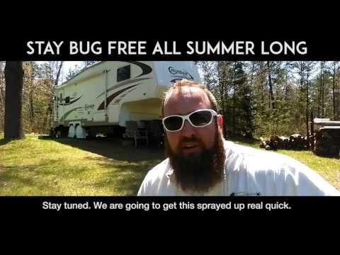 How to Keep Bugs Away This Summer