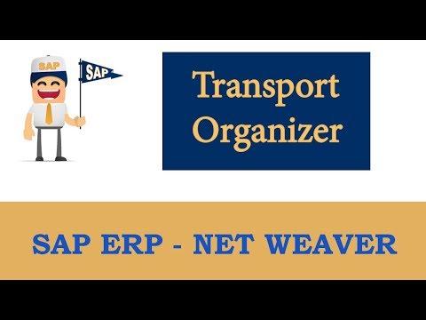 ERP SAP Basis - Net Weaver |  Basics of Change and Transport System | Transport Organizer – Part 2