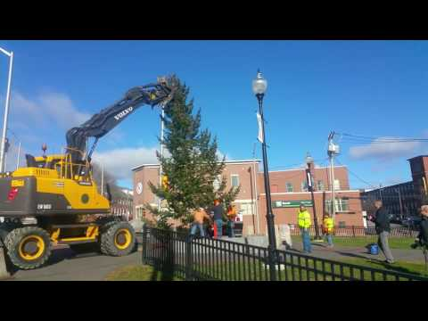 City of Dover NH Setting Up Christmas Tree