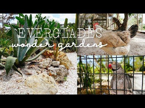 WONDER GARDENS FL VLOG// Wildlife Rescue + Rehabilitation