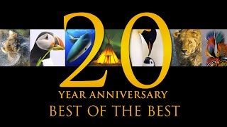 Best of the Best: 20 Years of Nature