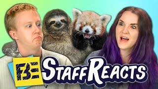 Try to Watch This Without Laughing or Grinning #4 (ft. FBE Staff)