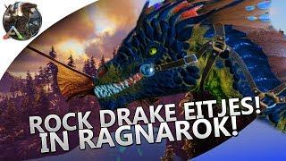 rock drake in ragnarok Videos - votube net