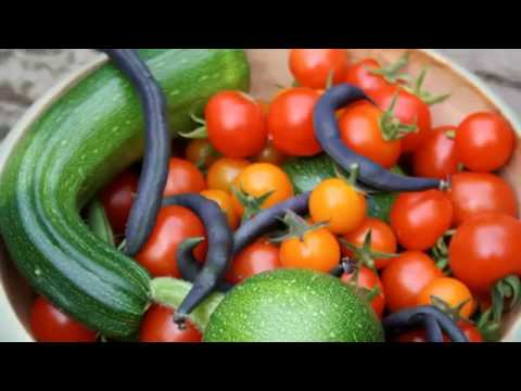 Vegetable Gardening For Dummies   Basic Guide