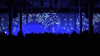 Robot Koch -Let me (Alex Banks RMX)_ Mira Festival