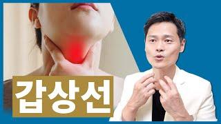 갑상선 질환, 갑상선기능저하증, 항진증, 물혹, 암