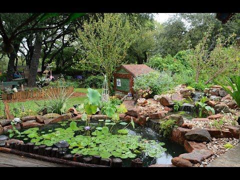 Serene Pond Gardens & Funky Outdoor Living |Jeannie & Steven |Central Texas Gardener