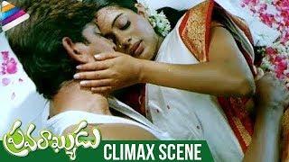 Pravarakyudu Telugu CLIMAX Scene   Jagapathi Babu   Priyamani   MM Keeravani   Telugu FilmNagar