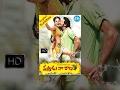 Download Vastadu Naa Raju Telugu Full Movie || Vishnu Manchu, Tapsee || Hemanth Madhukar || Mani Sharma In Mp4 3Gp Full HD Video