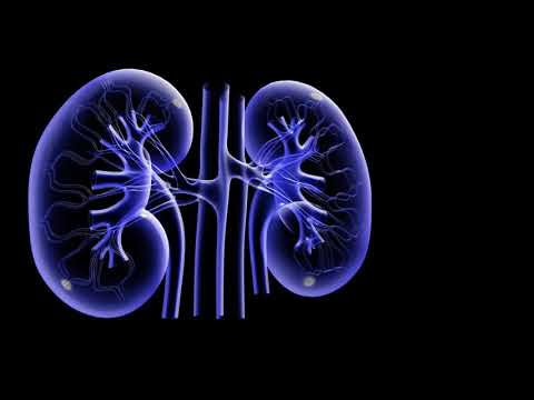 What Causes Chronic Kidney Failure - Signs And Symptoms Of Kidney Failure