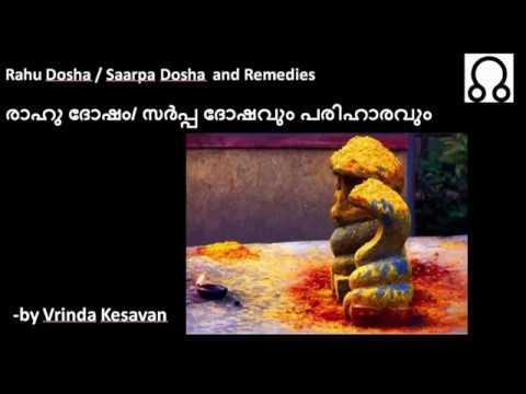 രാഹു ദോഷം/ സർപ്പ ദോഷവും പരിഹാരവും || Rahu Dosha and remedies || Malayalam video