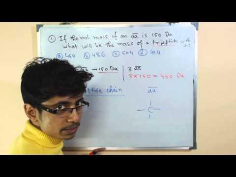 Molecular mass formula and molar mass calculation