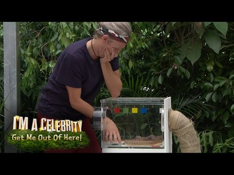 Jimmy Bullard's Surprise Trial: The Misery Match | I'm A Celebrity...Get Me Out Of Here!