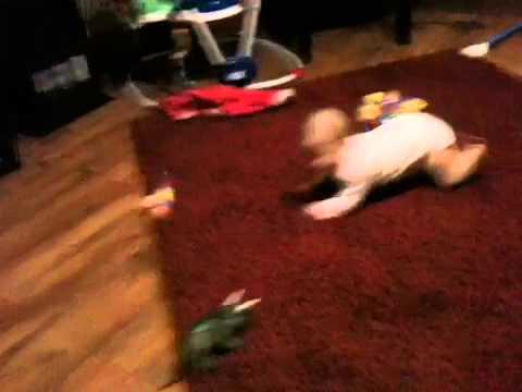 Edan crawls