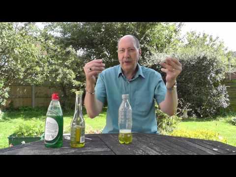 Making an Apple Cider Vinegar (ACV) Fly Trap