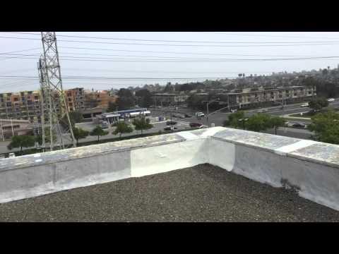 Century Plaza Roof