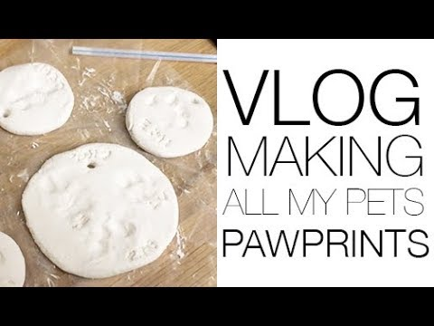 VLOG - Crafting with the Pets