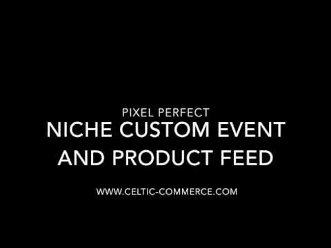 Creating Niche Specific Audiences, Conversions and Product Sets