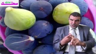 #x202b;الدكتور محمد الفايد   هل تعلم  ما يحدث لجسمك إذا أكلت التين الطازج ؟ لن تصدق#x202c;lrm;