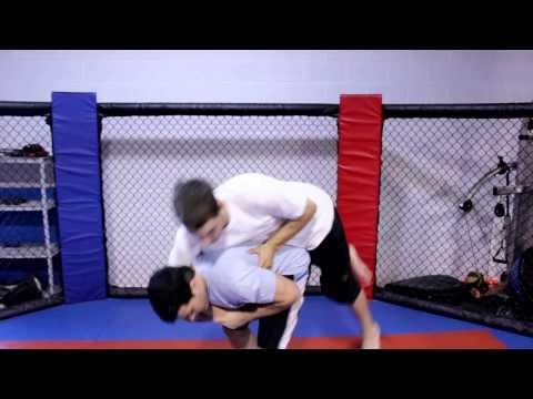 Brazilian Jiu Jitsu Purple Belt Requirements : Martial Arts & Exercise