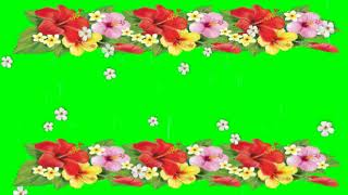 Green Screen Flowers Falling Effect - No Copy Right
