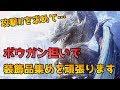 【PS4版MHWI】ボウガン担いで攻撃IIを探し求めます 4/3 ジンオウガ亜種多め