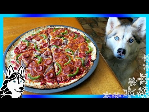 DIY PIZZA FOR DOGS   Dog friendly Pizza   DIY Dog Treats   Snow Dogs Snacks 66