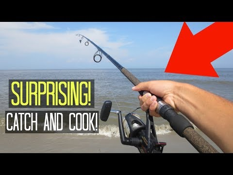 Surf Fishing on the Beach! CATCH AND COOK!! (Surprising!)