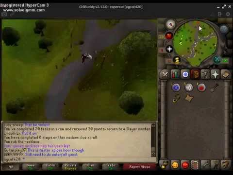 (clue scroll) West of the Chemist's house west of Rimmington 2007 runescape