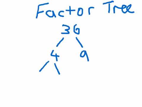 Factor Tree Explanation