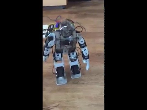 First walk attempt Humanoid Robot on a Raspberry PI Zero on Java