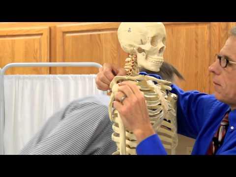 Shoulder Pain? Is it Tendonitis, Bursitis, or Capsulitis?