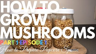 How to grow Mushrooms! Popcorn Tek, Bulk Substrate, and More! - 9tube tv