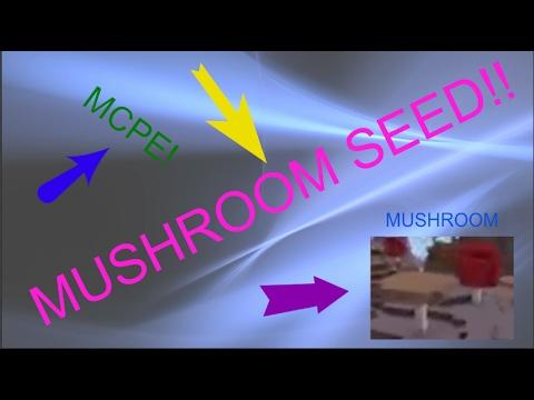 MCPE MUSHROOM SEED!